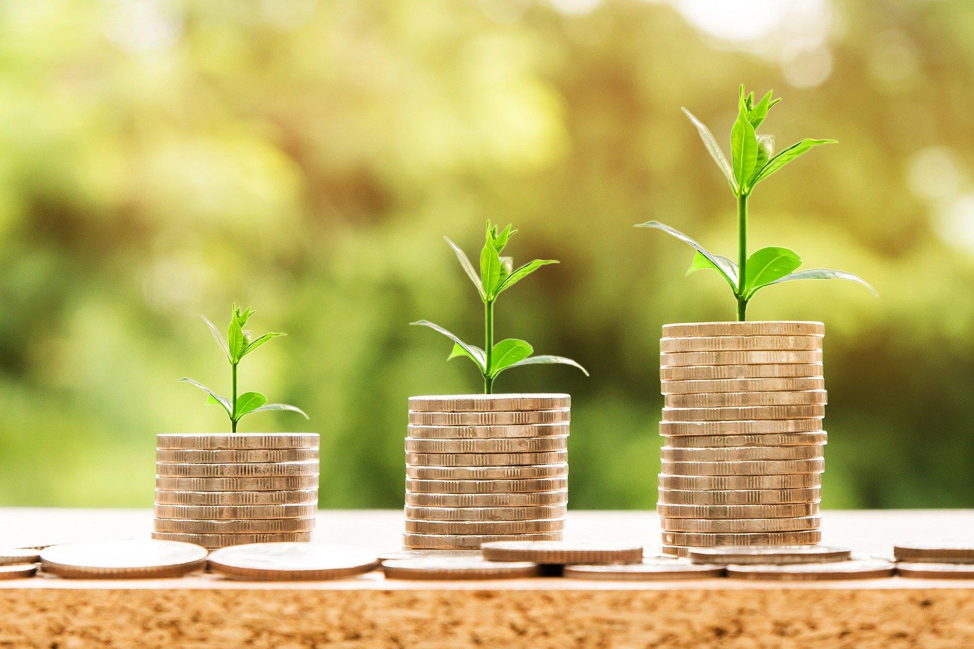 投資のメンタルの考え方【一流の投資家がやっている方法】